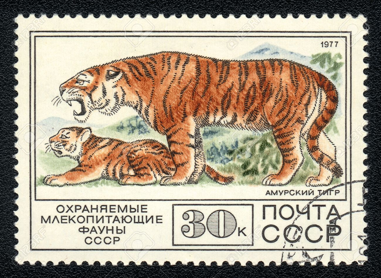 Pin by Jane Walden on RussiaPostage stamps Cat stamp