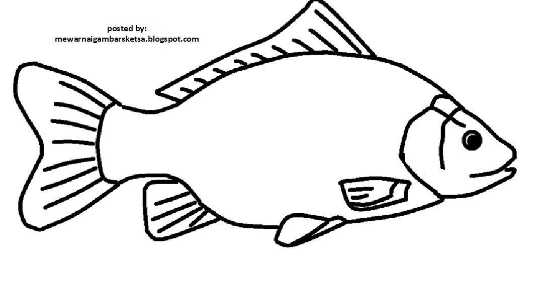 26 Gambar Ikan Kartun Mewarnai Di 2020 Gambar Kartun Ikan