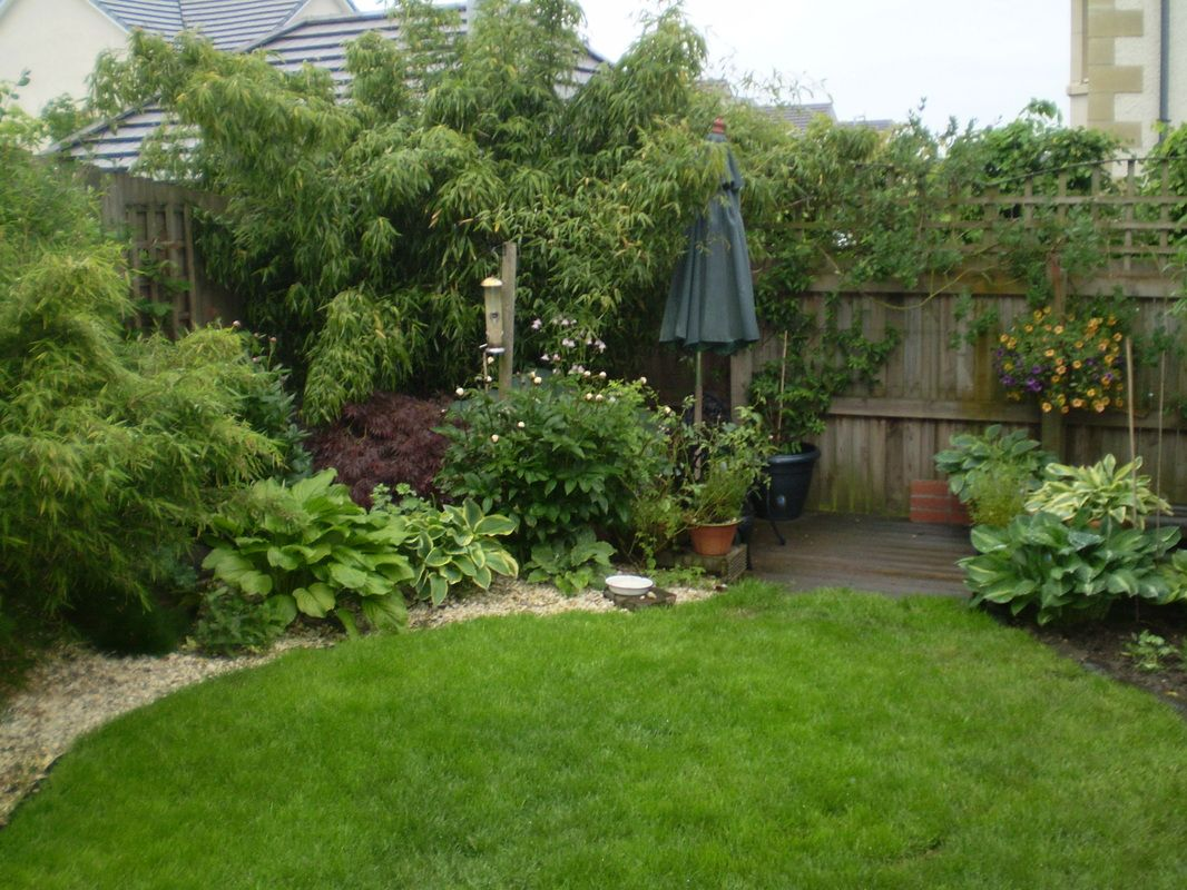 Stunning Landscape Borders For Garden Small 4 Year Planted Garden, Borders