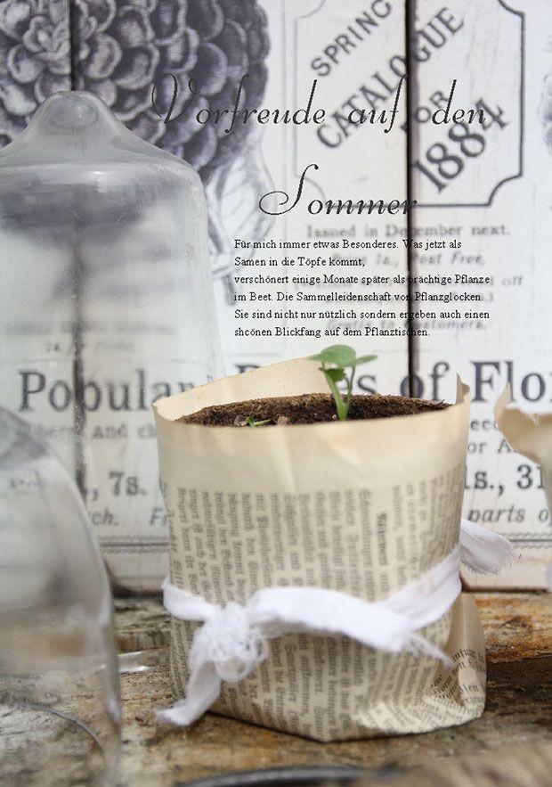 Mein Shabby Garden – Pflanzenanzucht, Foto@ Verlag Busse Seewald