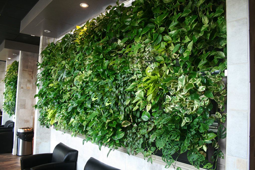 Indoor Living Walls Wall System With Insert Pots Planter Frame