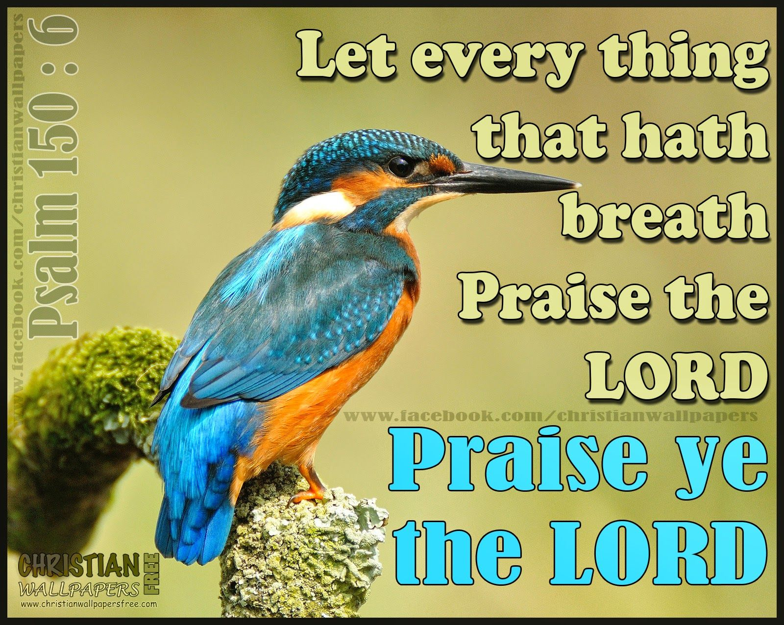 Praise Bible Verse Wallpaper Bible Quotes Pinterest Bible