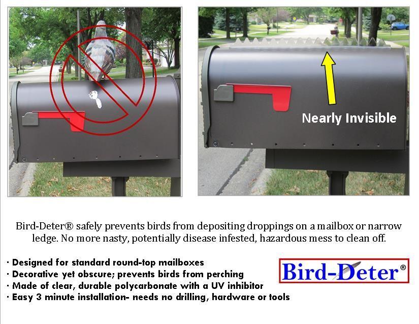 How To Clean Bird Poop Off Brick