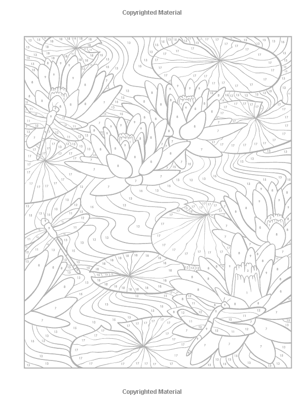 Creative Haven Floral Designs Paint by Number (Adult Coloring ...
