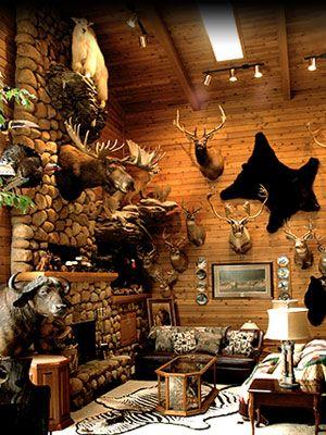 En mi casa tengo un sala de trofeos el silli n y la for Trofeos caza decoracion
