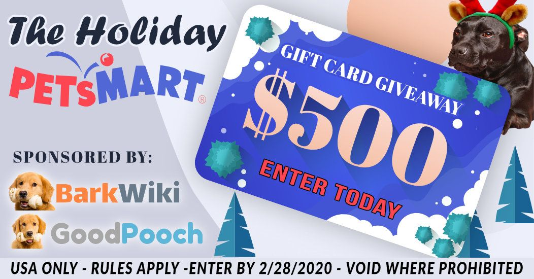 Help Me Win The Holiday Petsmart Gift Card Giveaway From Barkwiki Win Gift Card Gift Card Giveaway Sweepstakes Giveaways