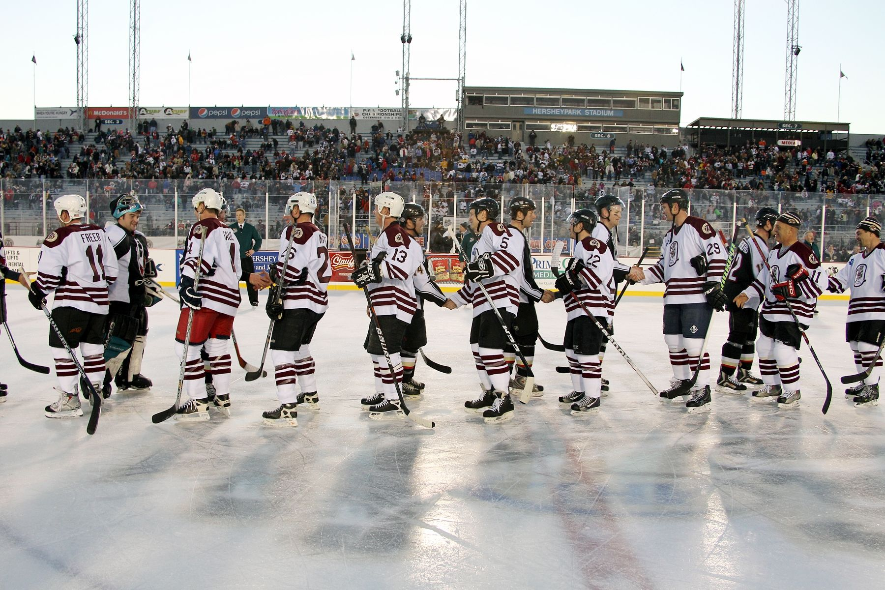 1.19.13 - post game hand shake from Bears and Penguins.  Photo Courtesy of JustSports Photography