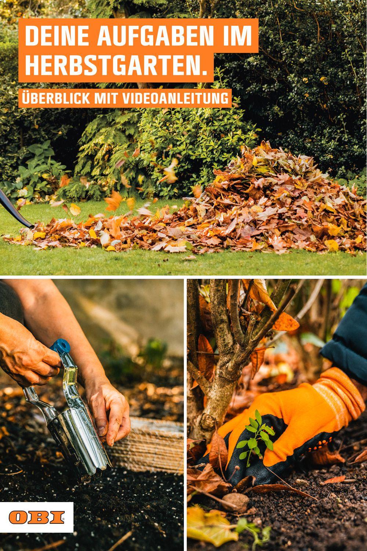 Video – Gartenarbeit im Herbst