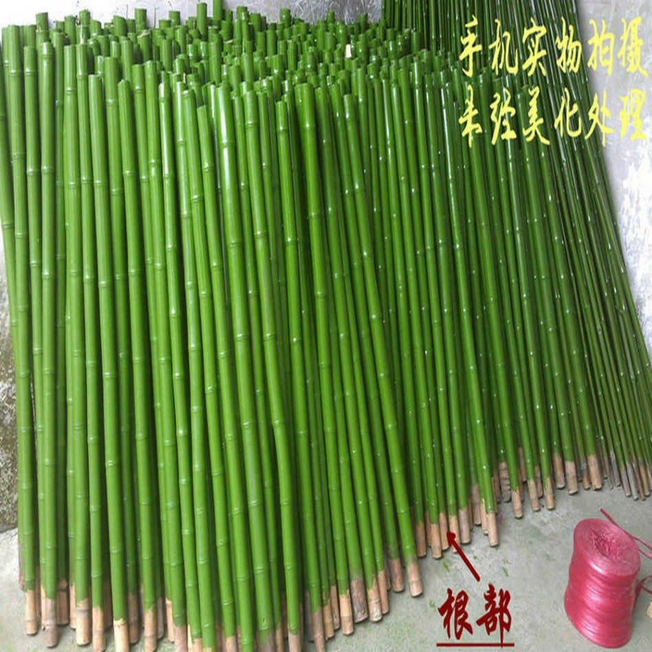 Beautiful Ideas For Home Decoration Design Using Bamboo Sticks Decor Great Images Of Green Painted Bamboo Sticks Decoration For Home Interior Design