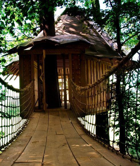 Luxury Tree Houses Designs: Tree House Plans, Tree