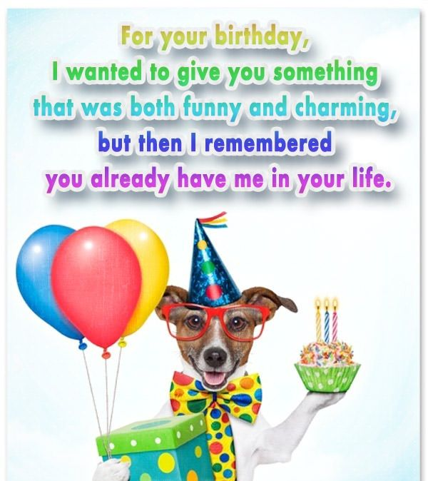 Funny birthday wishes messages images messages greetings funny funny birthday wishes messages images messages greetings m4hsunfo
