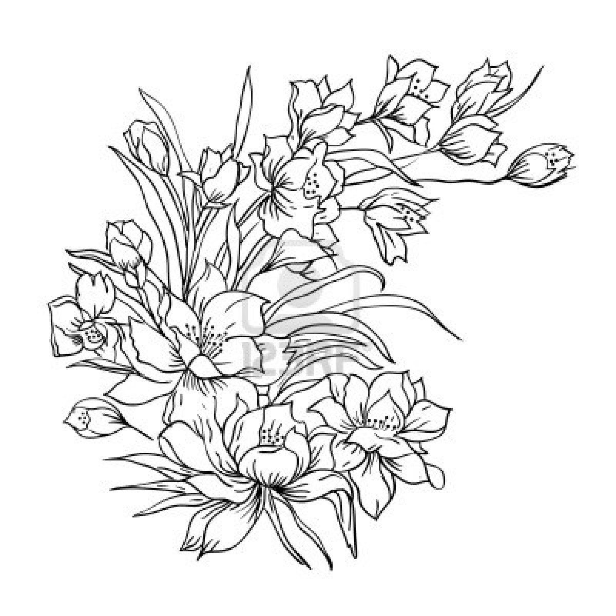 Dibujos de flores | Dibujos de ramos de flores | Fondos de pantalla de Ramos de flores