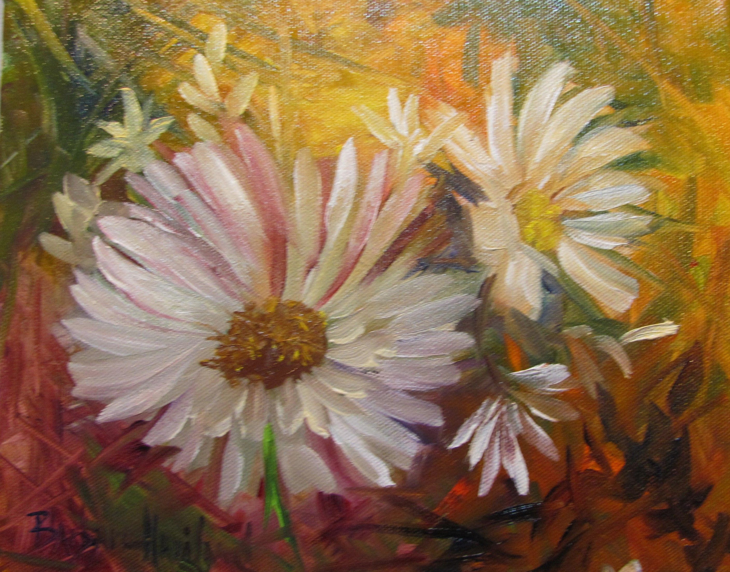 Daisies paintings originals for sale daisies by barbara daisies paintings originals for sale daisies by barbara haviland small oil izmirmasajfo Images