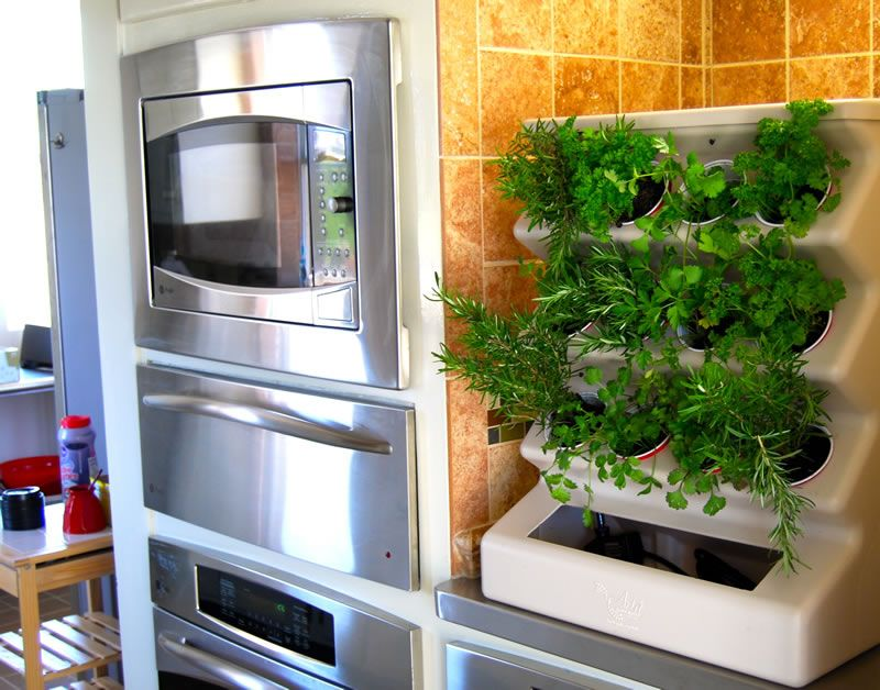 Garden Charming Home Indoor Organic Vegetable Idea