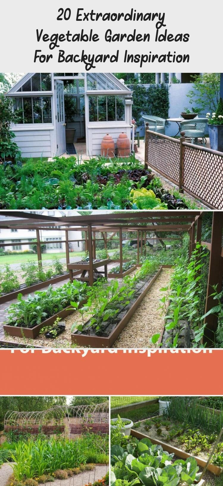 Backyard Container Vegetable Gardening Layout Extraordinary