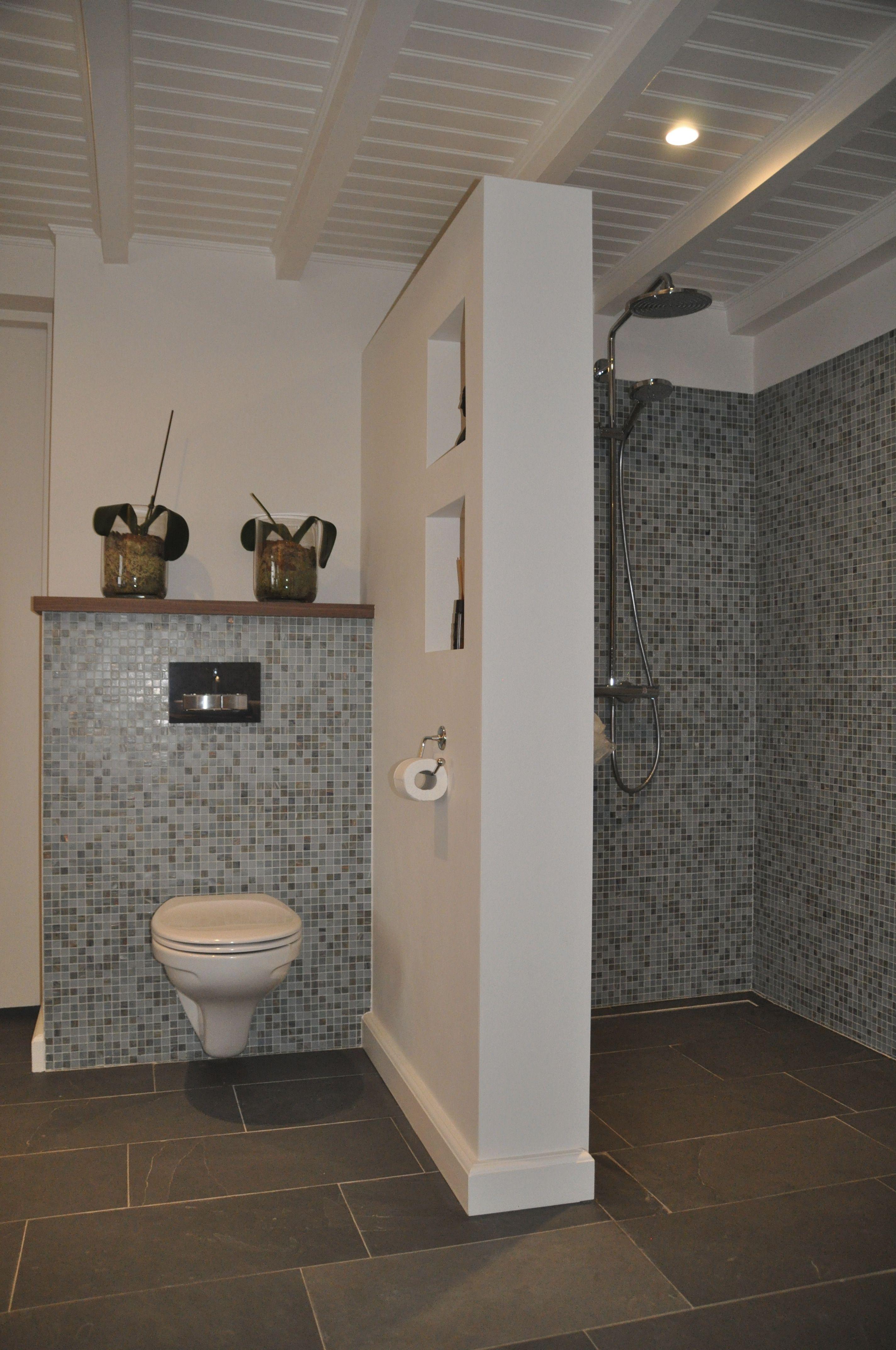 praktisch afscheidingswandje tussen douche en toilet met vakken