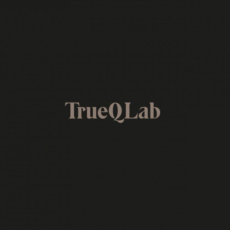 monotypostudio - True Q Lab   Corporate identity design project for