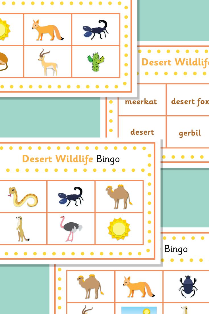 Desert Wildlife Bingo Bingo, Zoo animals, Wildlife