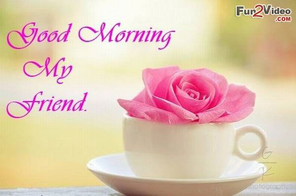 Good Morning My Friend In 2020 Good Morning My Friend Morning Quotes For Friends Good Morning Friends