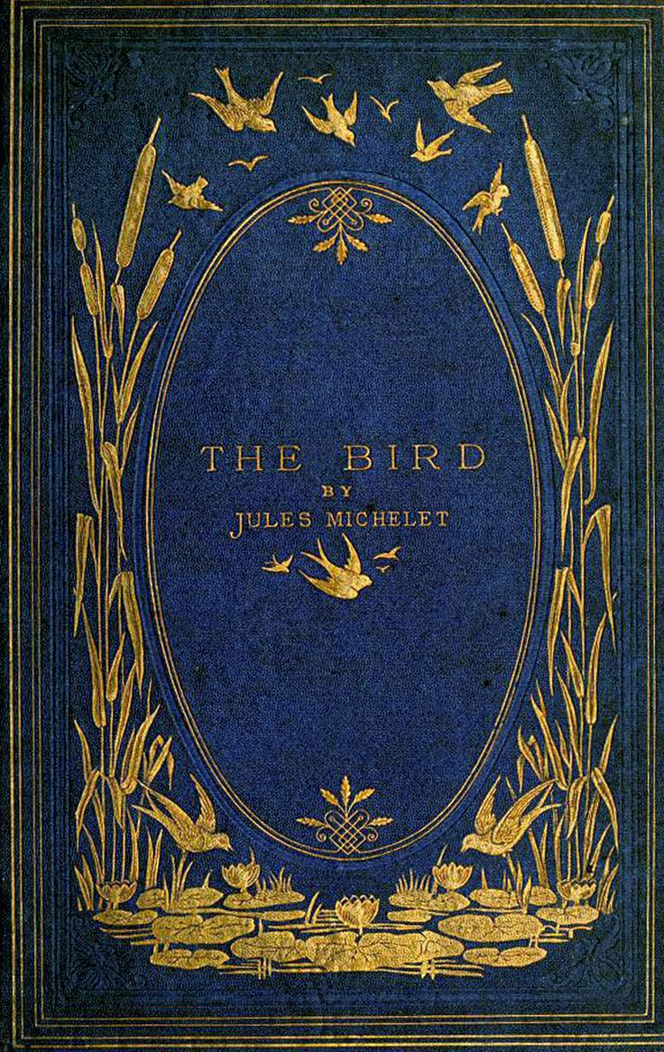 Book Cover Design Artists Uk : Antique book cover the bird art nouveau covers