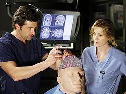 Fake brain doctor operating on a fake brain. go McDreamy!   Greys anatomy, Anatomy, Anatomy study