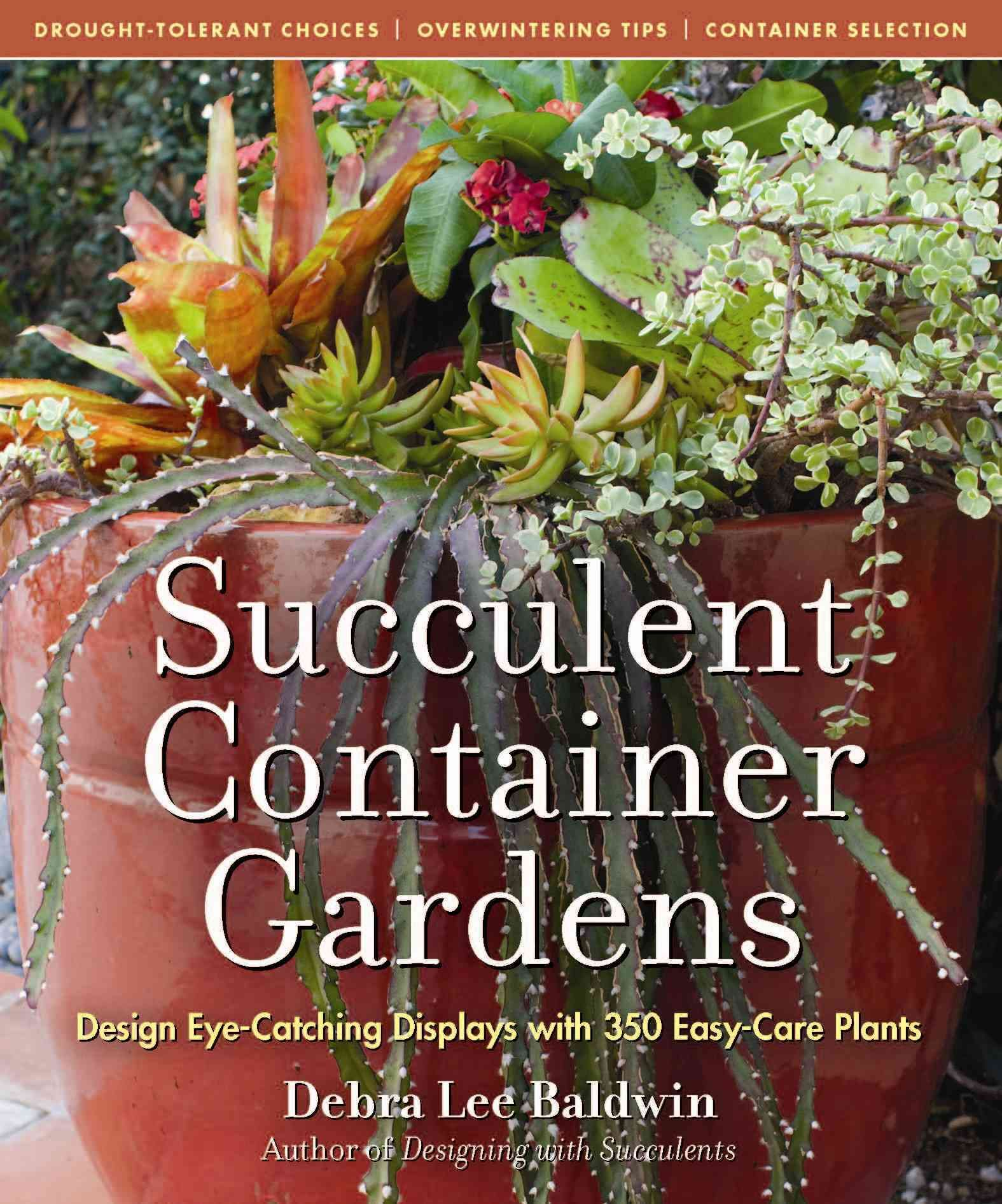 Succulent Container Gardens: Design Eye-Catching Displays