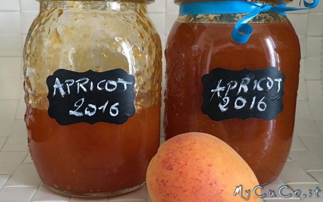 Confettura di albicocche con Cuisine e i-Companion