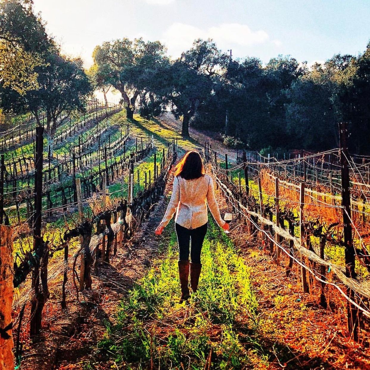 Wine + Vineyard tour? Perfection to me! Photo by