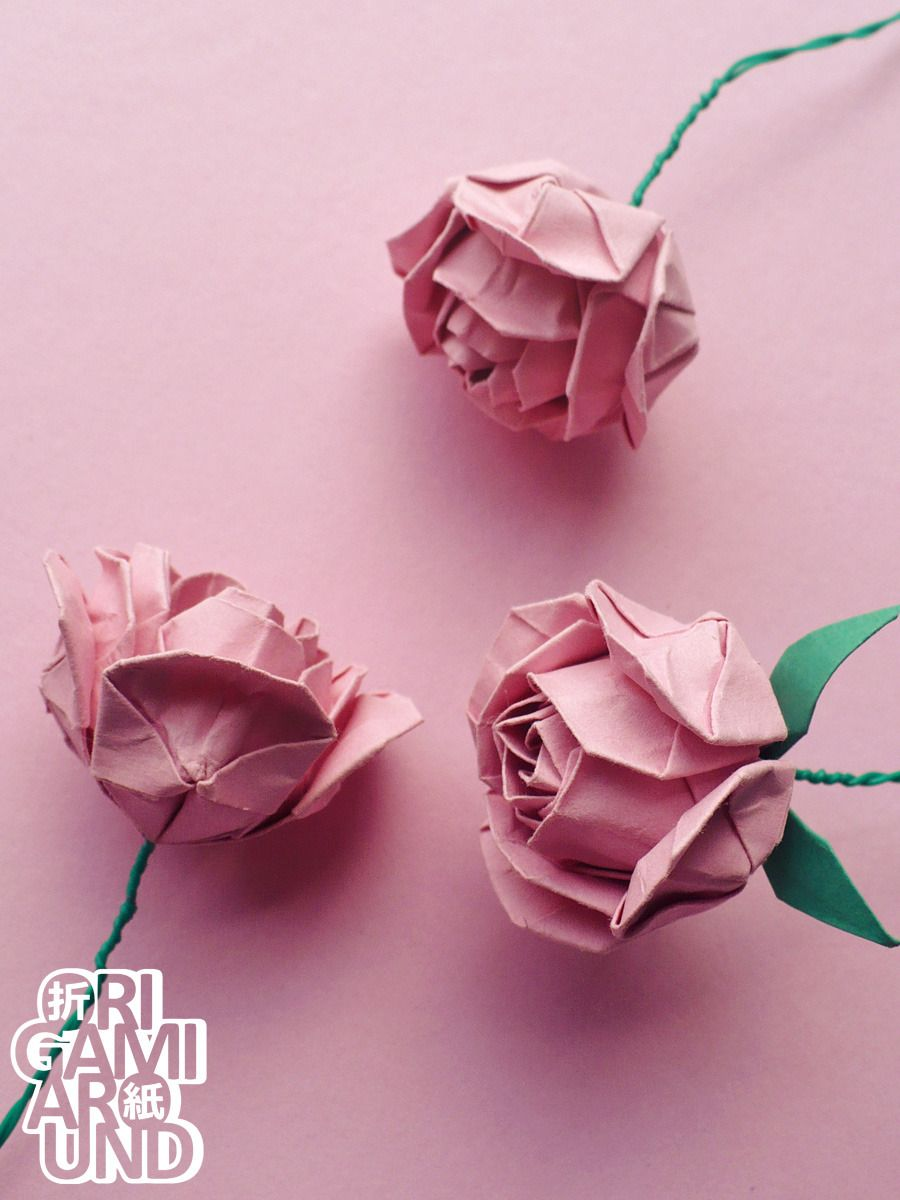 Origami Rose Flower Paper Craft Pinterest Origami Origami