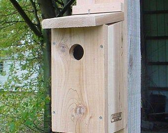 Bluebird Bird House slotted entrance Sparrow Resistant