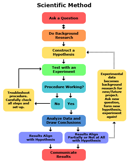 Comparing The Engineering Design Process And The Scientific Method Scientific Method Engineering Design Process Scientific Method Steps