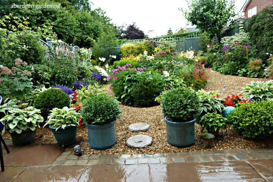 Cheshire Gardening | Small back gardens, Plants, Back gardens