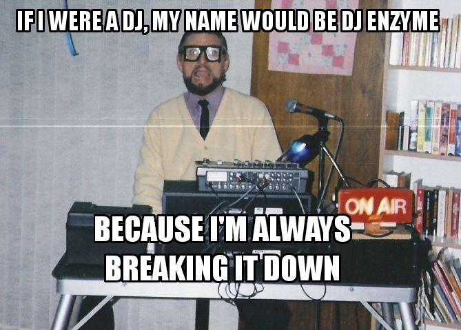 Enzyme jokes