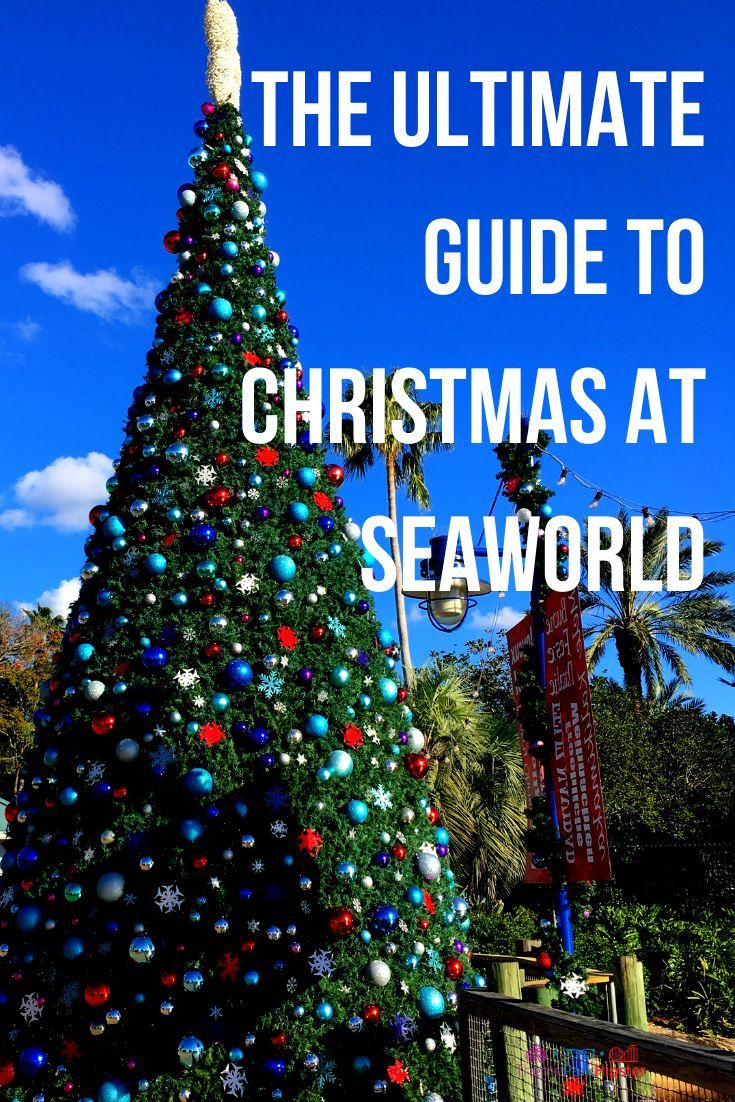 How to Celebrate Christmas at SeaWorld Orlando in 2020