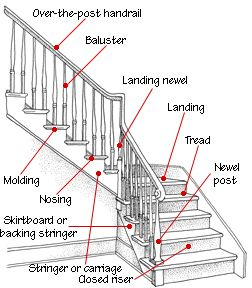 Beautiful Staircase Anatomy