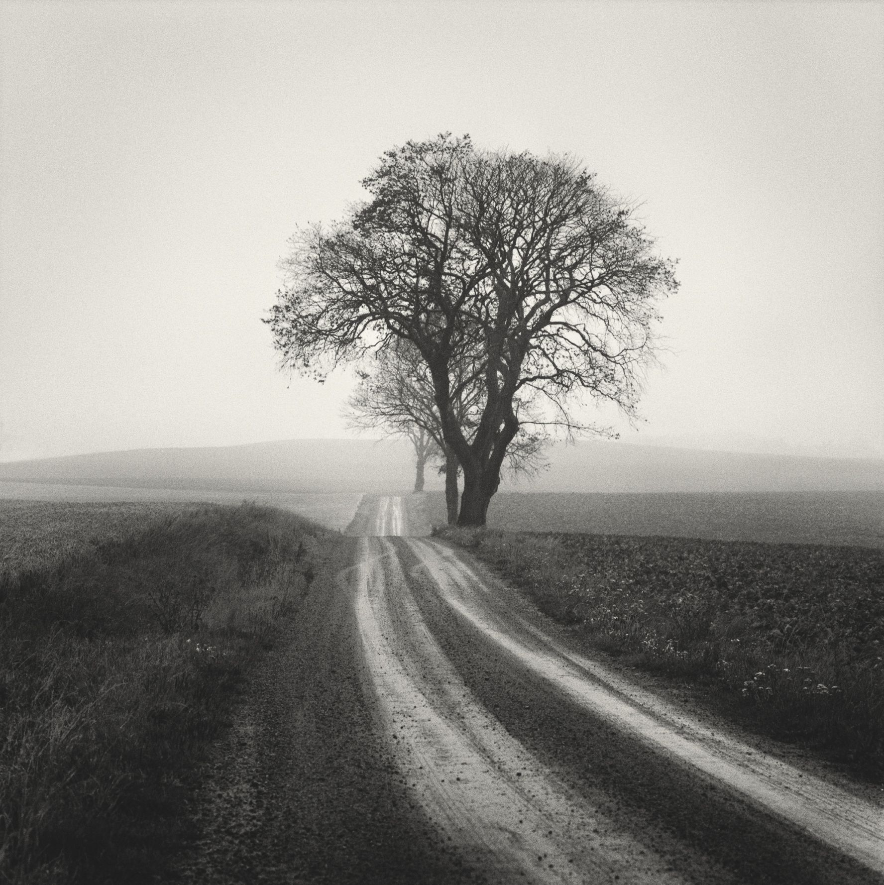 Black And White Analog Photographs Explore The Serenity Of Long Meandering Roads Black And White Landscape Black And White Photography Landscape Photography