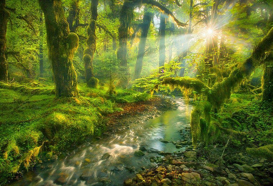 Marc Adamus: Inolvidable fotografía de la naturaleza