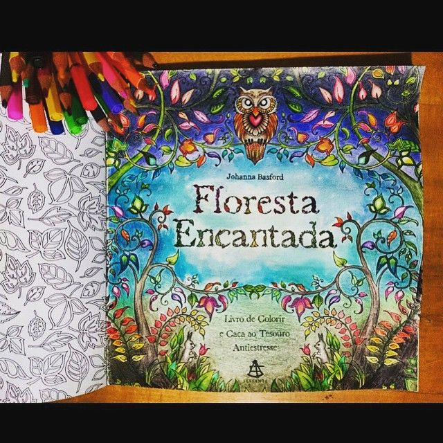 Beautifully Done Title Page Johanna Basford Enchanted Forest Secret Garden Adult Coloring