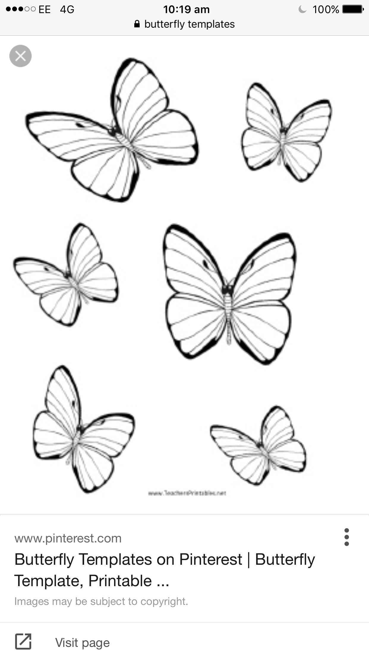 butter fly templates i used to create my project damian hirst