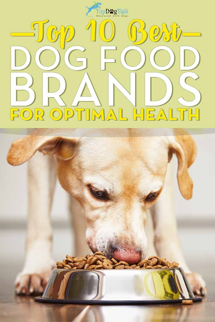 Our 10 Favorite Dog Food Brands In 2020 Best Dog Food Brands
