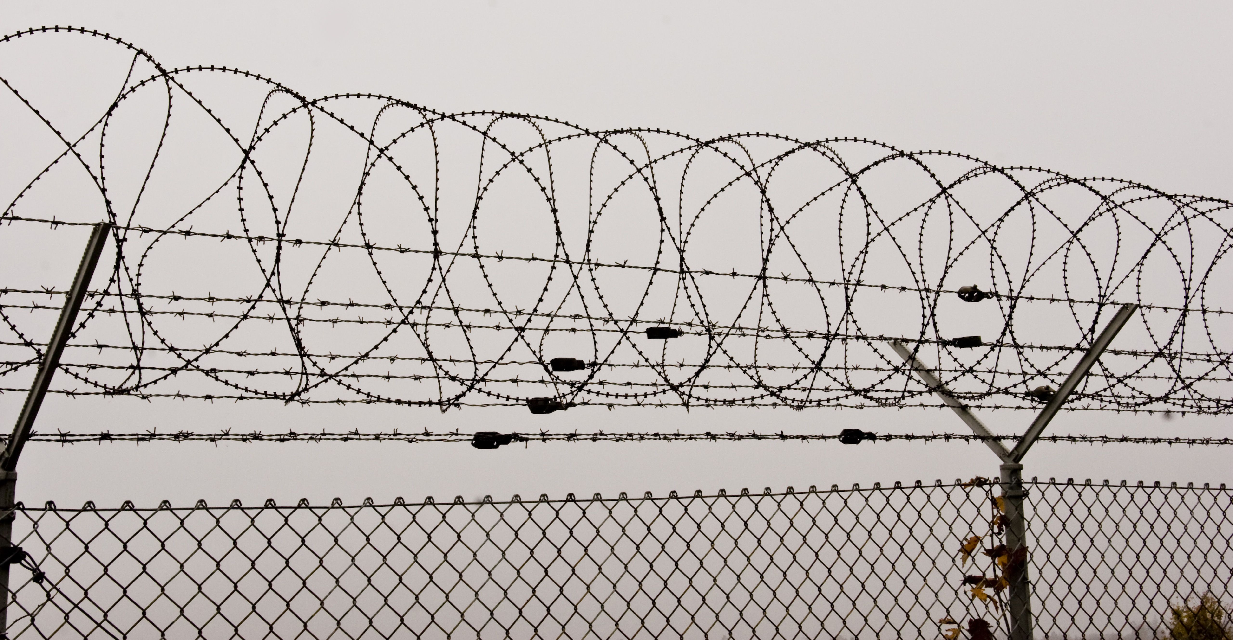 Barbed Wire | Iron Bazar | Graphic design references | Pinterest