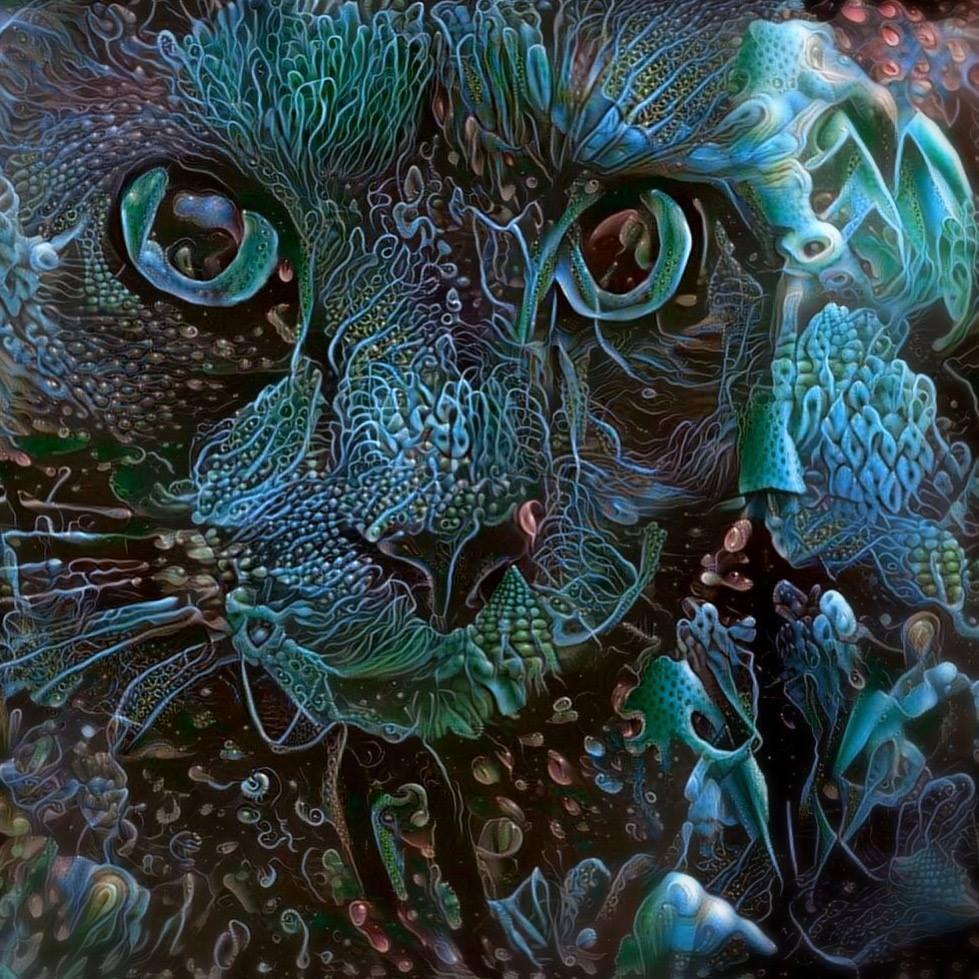 psychedelic underwater cat on Electric Catnip