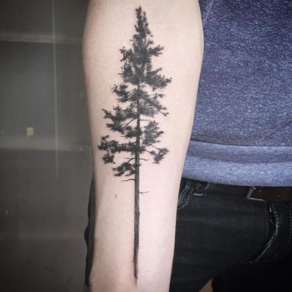 bcb2e36e6c6ca Awesome Black Ink Pine Tree Tattoo On Forearm   tattoos   Pine tree ...