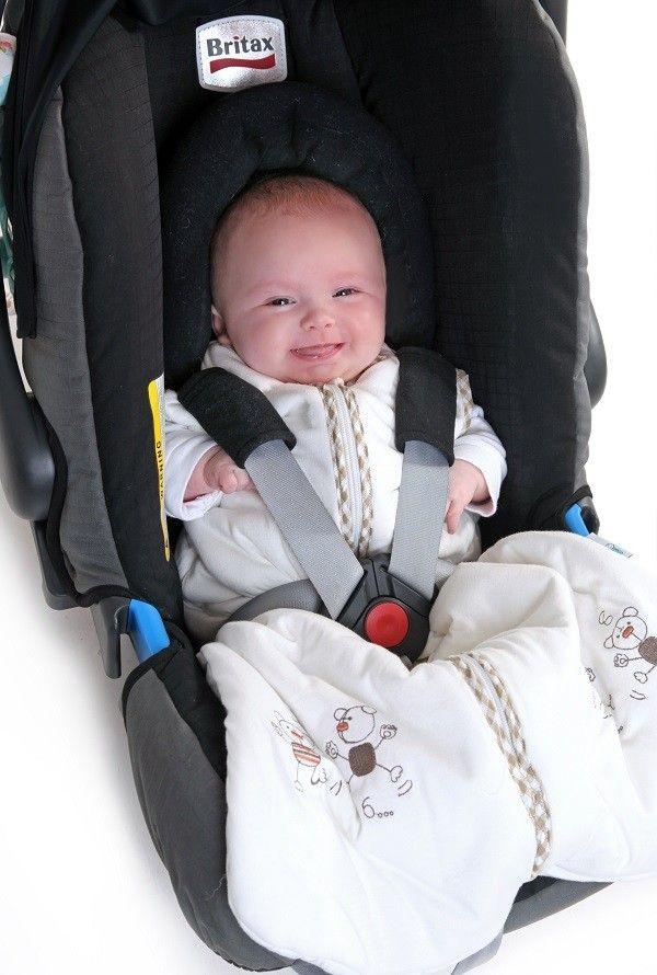 Baby Travel Sleeping Bag Dancing Bears | Baby Travel Bags ...