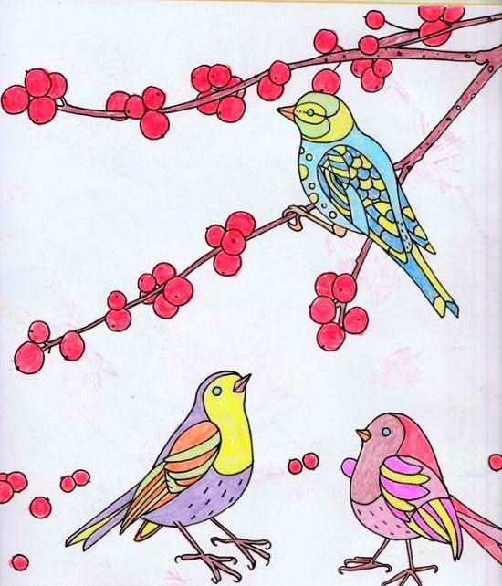 Coloured By Caroline Kish, (me). Birds & Butterflies Colouring Book ...