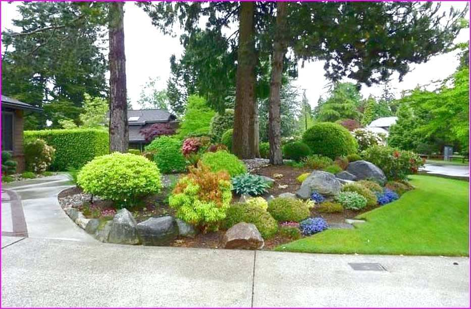no maintenance front yard landscaping low maintenance ...