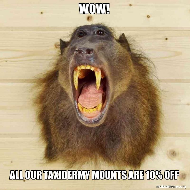 All Safariworks Taxidermy Sales Mounts are 10% off with