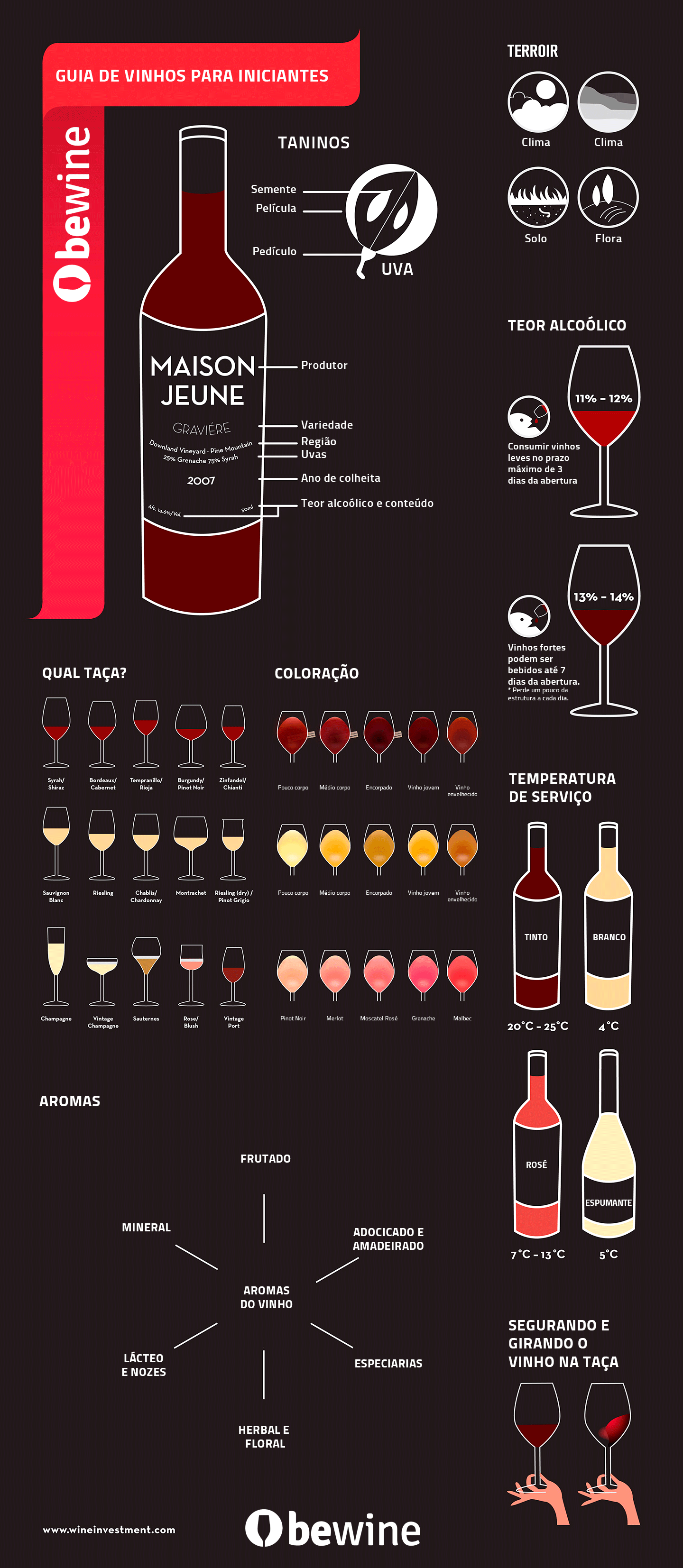 Guia básico de vinhos para iniciantes