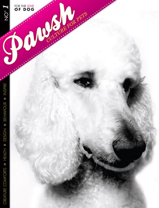 Pawsh Magazine Our First Cover For The Love Of Dog