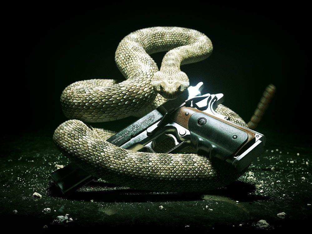 Rattlesnake Silverballer Pistol Art Hitman Absolution Art Gallery In 2020 Snake Wallpaper Guns Wallpaper Snake Images